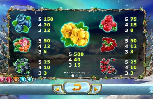Таблица выплат онлайн автомата Winterberries